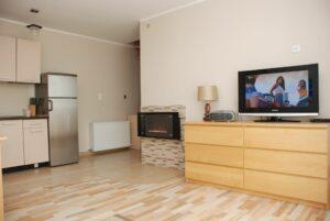 Salon, TV i kominek elektryczny