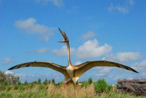 Park dinozaurów Łeba