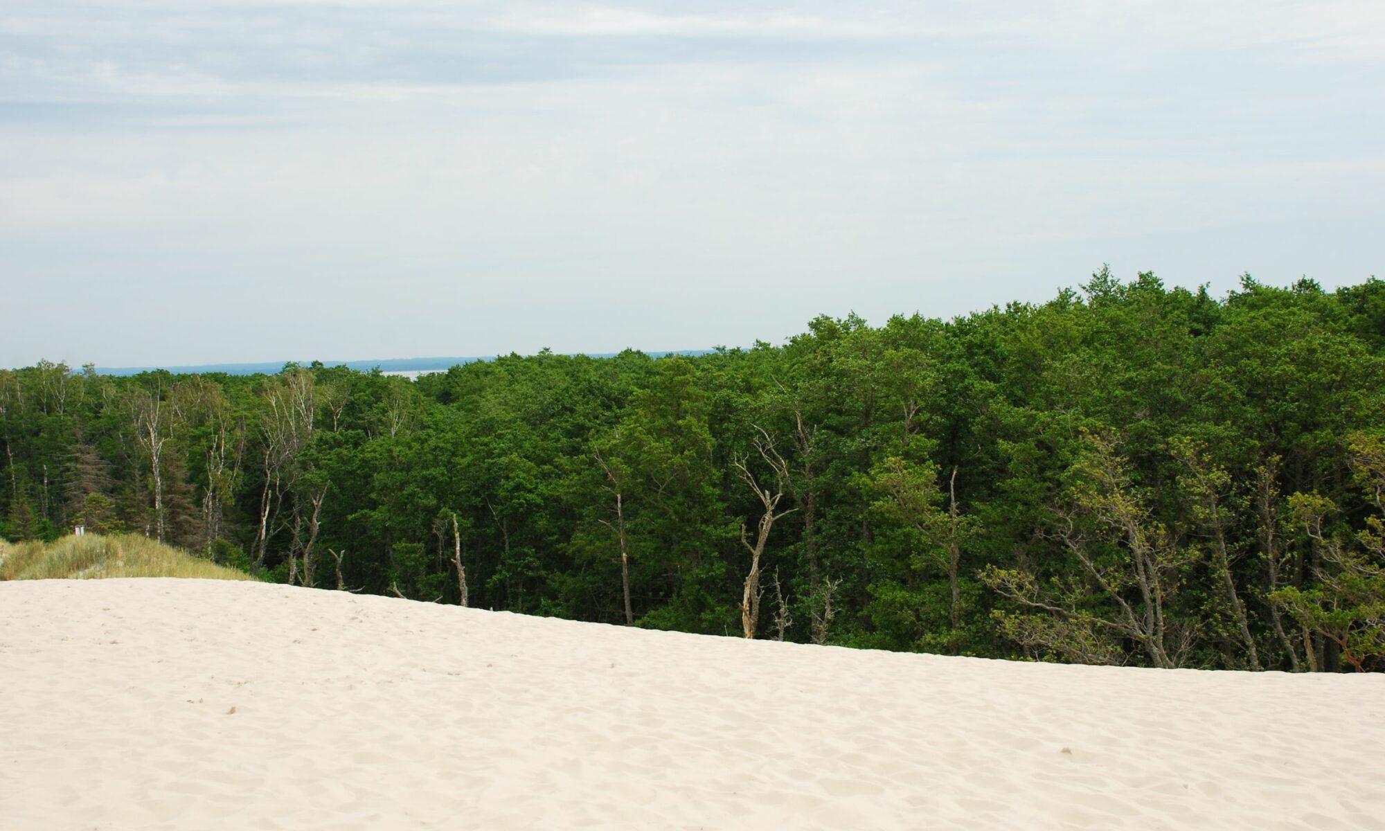 okolica łeby ruchome wydmy